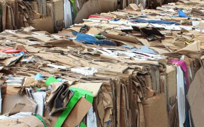 Cardboard Recycling: 10 Things You Need To Know